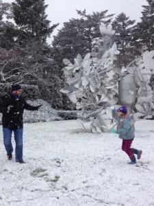 Snowball Fight NYBG December 2012