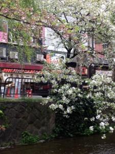 Strolling Kyoto